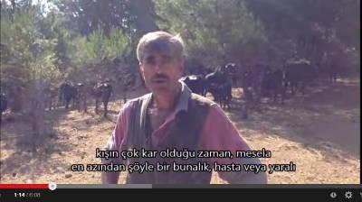 Video – Söyleşi