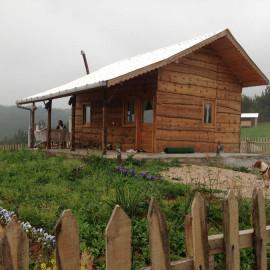 Yabaani Çiftliği